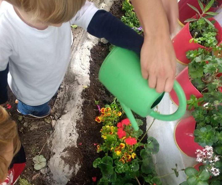 Jardineria en Educación Inicial